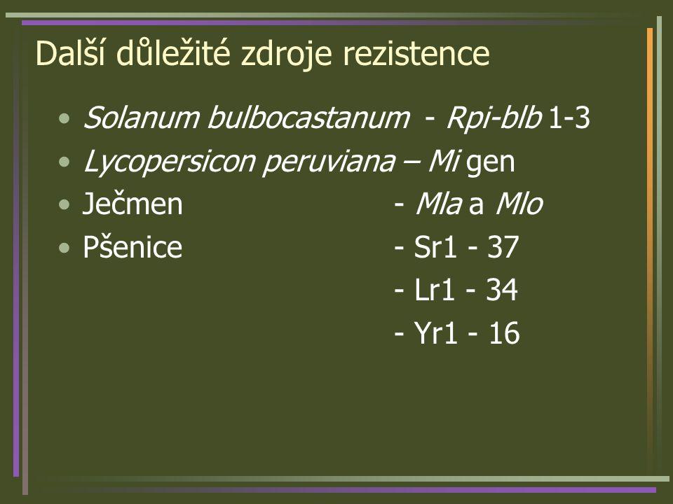 Další důležité zdroje rezistence Solanum bulbocastanum - Rpi-blb 1-3 Lycopersicon peruviana – Mi gen Ječmen - Mla a Mlo Pšenice - Sr1 - 37 - Lr1 - 34 - Yr1 - 16