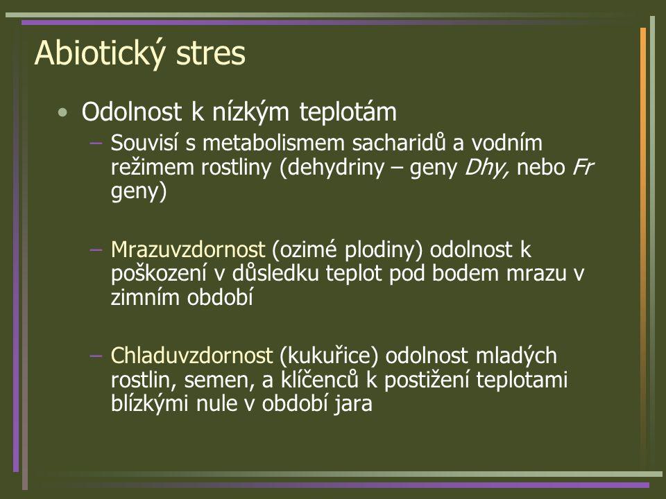 Abiotický stres Odolnost k nízkým teplotám –Souvisí s metabolismem sacharidů a vodním režimem rostliny (dehydriny – geny Dhy, nebo Fr geny) –Mrazuvzdo