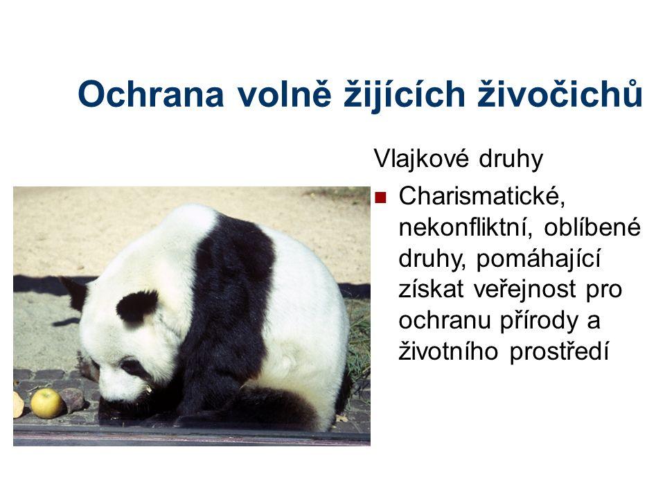 Ochrana volně žijících živočichů Vlajkové druhy Charismatické, nekonfliktní, oblíbené druhy, pomáhající získat veřejnost pro ochranu přírody a životní