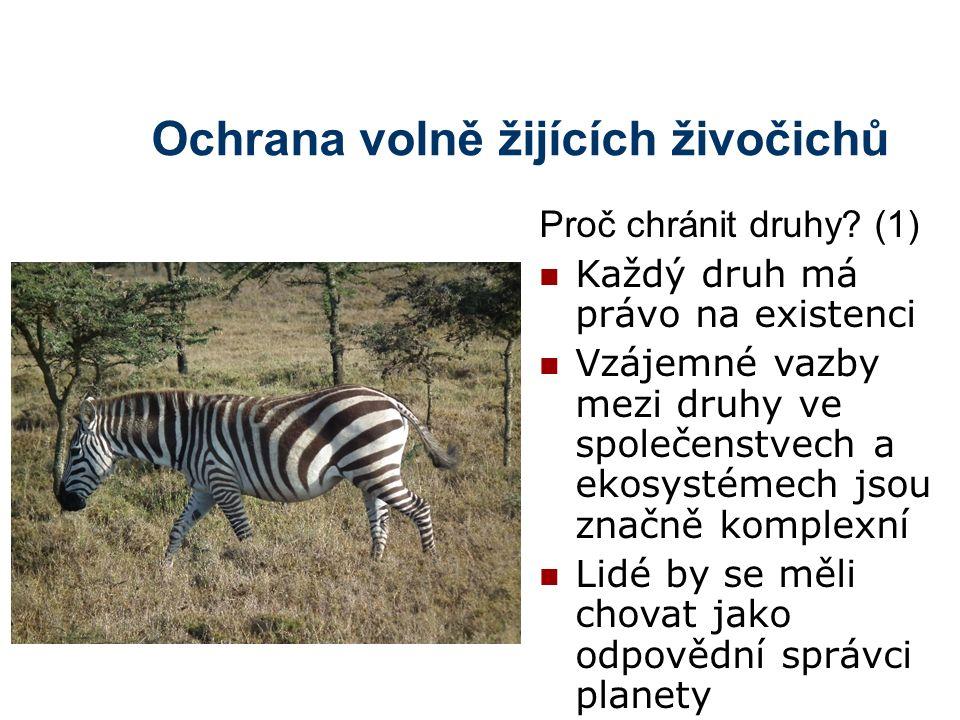 Ochrana volně žijících živočichů Proč chránit druhy? (1) Každý druh má právo na existenci Vzájemné vazby mezi druhy ve společenstvech a ekosystémech j