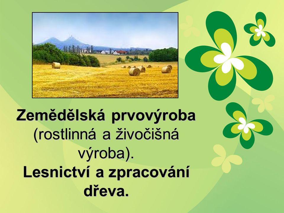Zemědělská prvovýroba (rostlinná a živočišná výroba). Lesnictví a zpracování dřeva.