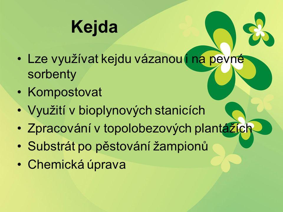 Kejda Lze využívat kejdu vázanou i na pevné sorbenty Kompostovat Využití v bioplynových stanicích Zpracování v topolobezových plantážích Substrát po pěstování žampionů Chemická úprava