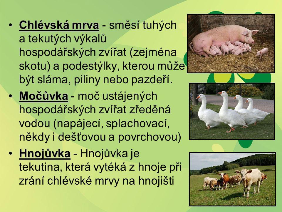 Chlévská mrvaChlévská mrva - směsí tuhých a tekutých výkalů hospodářských zvířat (zejména skotu) a podestýlky, kterou může být sláma, piliny nebo pazdeří.