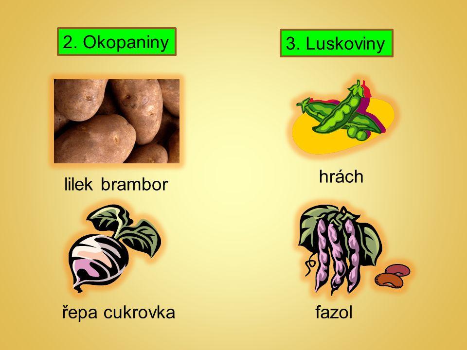 2. Okopaniny 3. Luskoviny lilek brambor řepa cukrovka hrách fazol