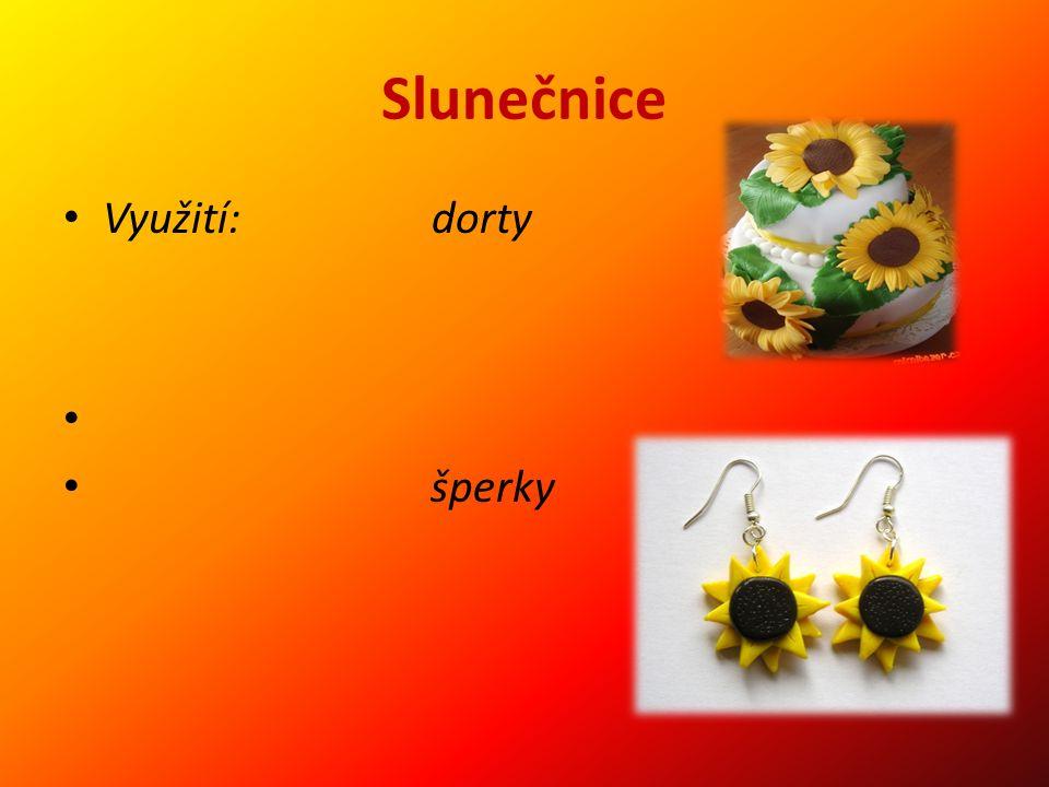 Slunečnice Využití: dorty šperky
