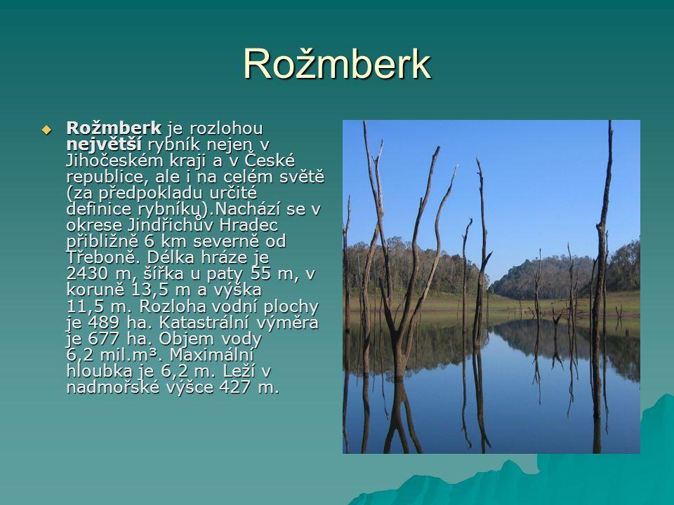 Rožmberk  Rožmberk je rozlohou největší rybník nejen v Jihočeském kraji a v České republice, ale i na celém světě (za předpokladu určité definice rybníku).Nachází se v okrese Jindřichův Hradec přibližně 6 km severně od Třeboně.