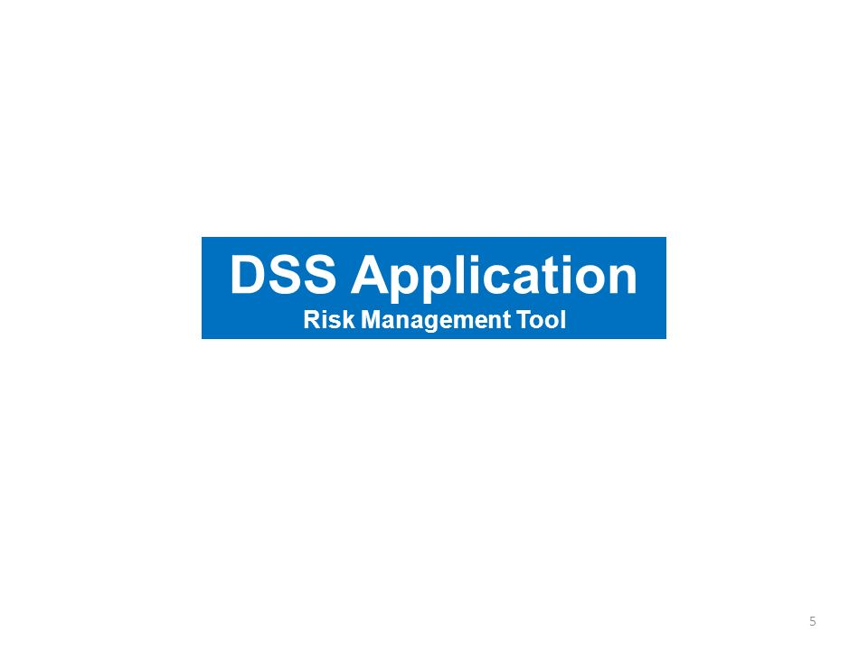 DSS Application Risk Management Tool 5