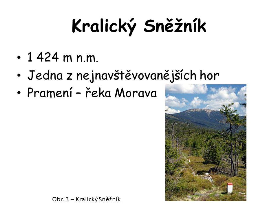 Kralický Sněžník 1 424 m n.m. Jedna z nejnavštěvovanějších hor Pramení – řeka Morava Obr. 3 – Kralický Sněžník