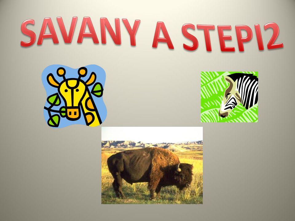 Antilopy obývají africké savany a asijské stepi.Obvykle tvoří stáda samic s mláďaty a stáda samců.