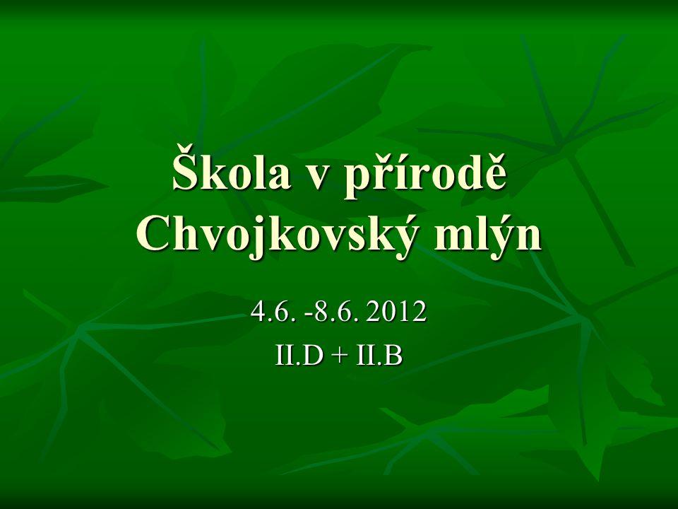 Škola v přírodě Chvojkovský mlýn 4.6. -8.6. 2012 II.D + II.B