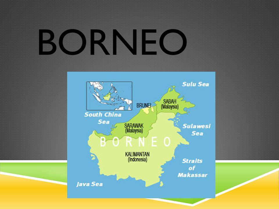  Borneo je 3.největší ostrov na světě. Nachází se v jihovýchodní Asii.