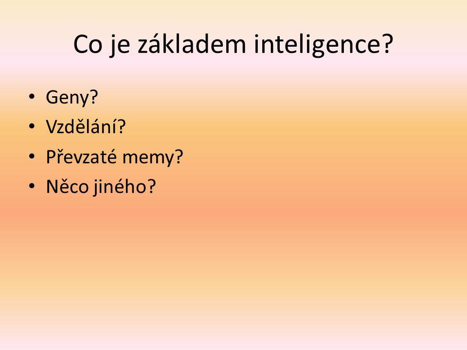 Co je základem inteligence? Geny? Vzdělání? Převzaté memy? Něco jiného?