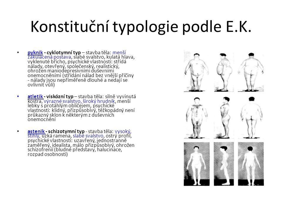 Konstituční typologie podle E.K. pyknik - cyklotymní typ – stavba těla: menší zakulacená postava, slabé svalstvo, kulatá hlava, vyklenuté břicho, psyc