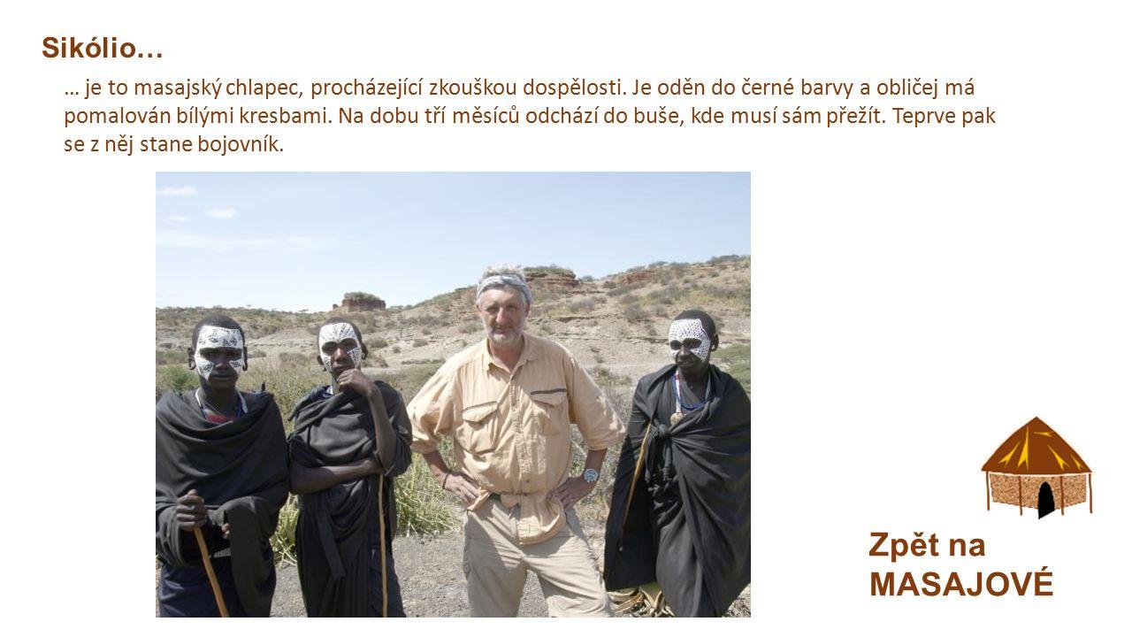 """MASAJOVÉ Zpět na mapu  Masajská vesnice """"Boma , jednoduché chýše  Pastevci dobytka  Zvířata mají ohradu uvnitř vesnice – ochrana."""