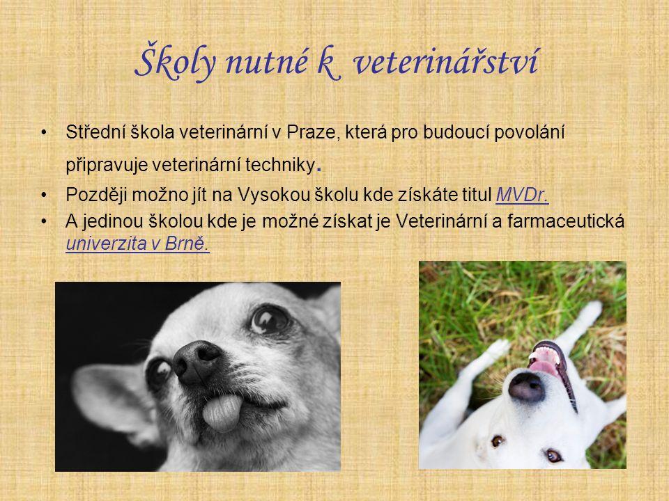 Školy nutné k veterinářství Střední škola veterinární v Praze, která pro budoucí povolání připravuje veterinární techniky.