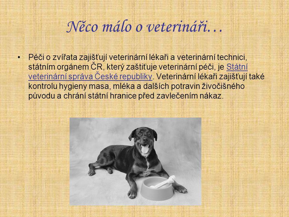 Něco málo o veterináři… Péči o zvířata zajišťují veterinární lékaři a veterinární technici, státním orgánem ČR, který zaštiťuje veterinární péči, je Státní veterinární správa České republiky.