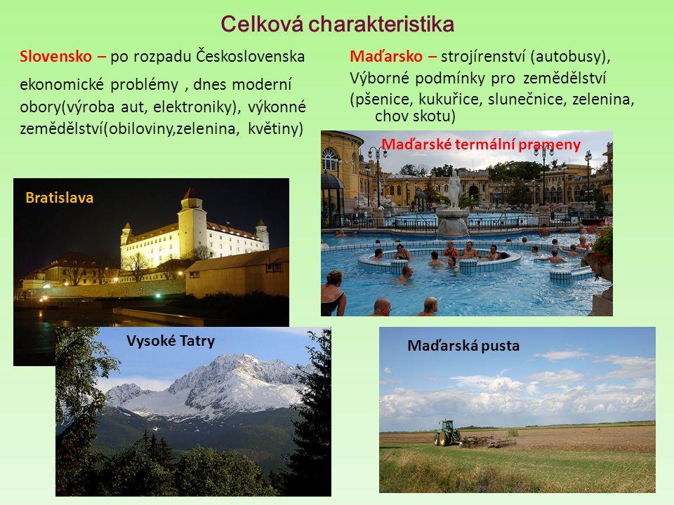 Celková charakteristika Slovensko – po rozpadu Československa ekonomické problémy, dnes moderní obory(výroba aut, elektroniky), výkonné zemědělství(ob