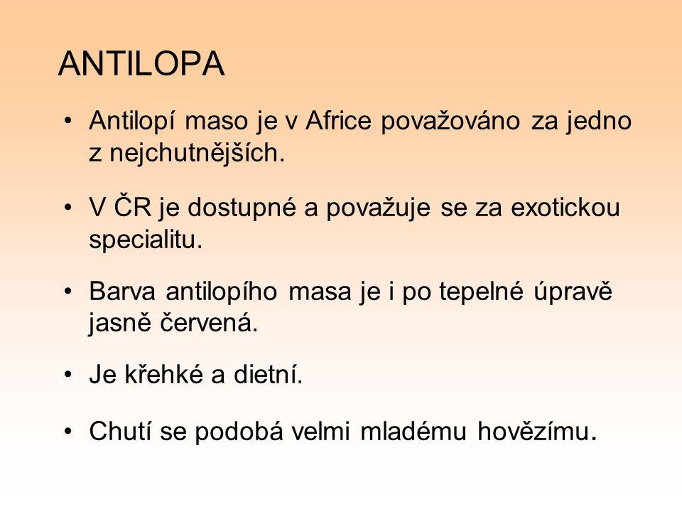 ANTILOPA Antilopí maso je v Africe považováno za jedno z nejchutnějších.