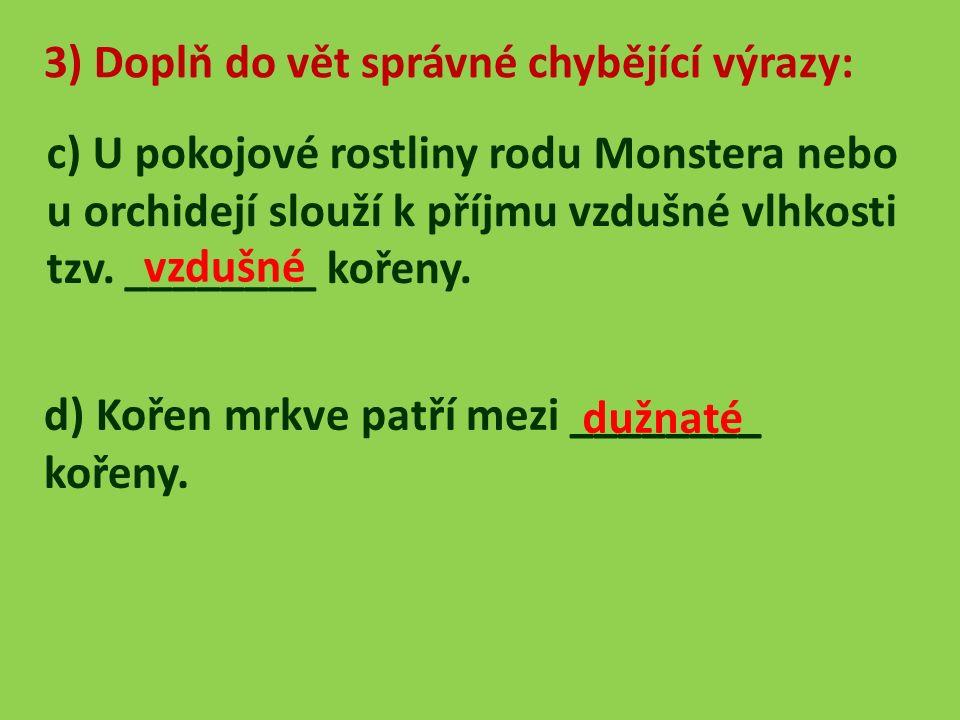 4) Rozhodni, zda-li platí věty: a) Postranní kořeny obsahují také přesýpavý škrob v kořenové čepičce.