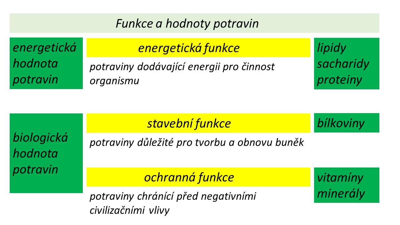 Funkce a hodnoty potravin energetická funkce stavební funkce ochranná funkce potraviny dodávající energii pro činnost organismu potraviny důležité pro