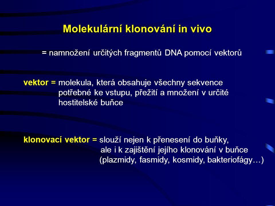 Molekulární klonování in vivo vektor = molekula, která obsahuje všechny sekvence potřebné ke vstupu, přežití a množení v určité hostitelské buňce klonovací vektor = slouží nejen k přenesení do buňky, ale i k zajištění jejího klonování v buňce (plazmidy, fasmidy, kosmidy, bakteriofágy…) = namnožení určitých fragmentů DNA pomocí vektorů
