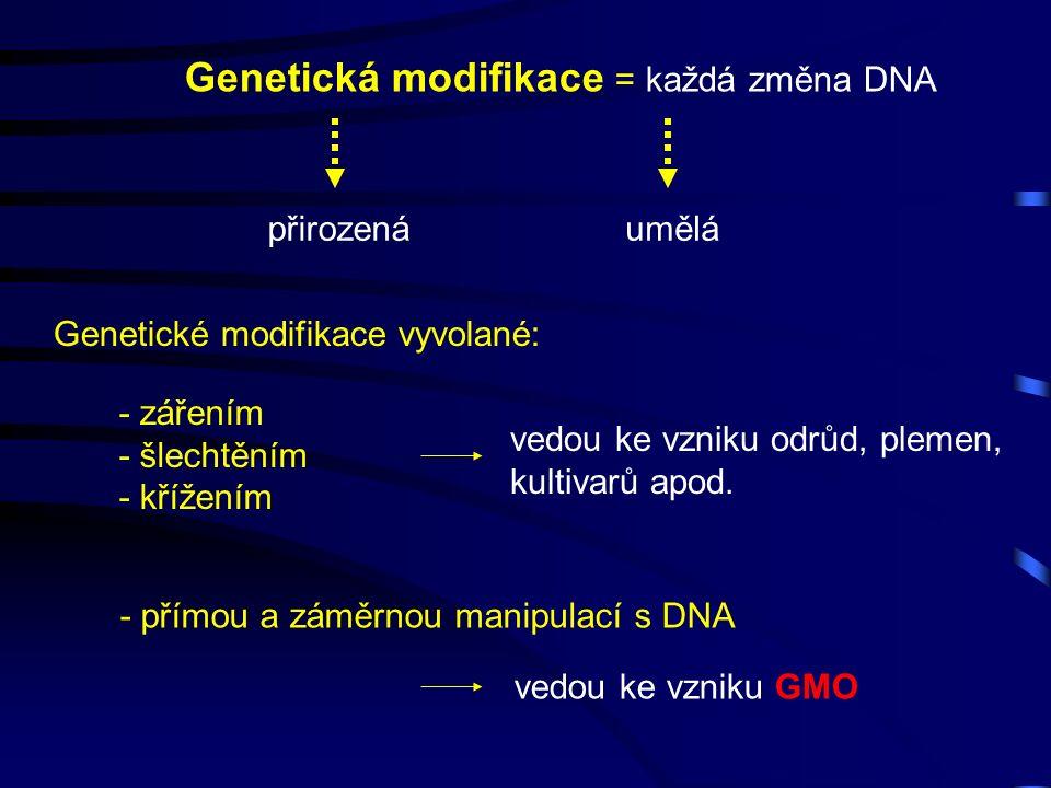 Genetická modifikace = každá změna DNA přirozenáumělá Genetické modifikace vyvolané: - zářením - šlechtěním - křížením vedou ke vzniku odrůd, plemen, kultivarů apod.