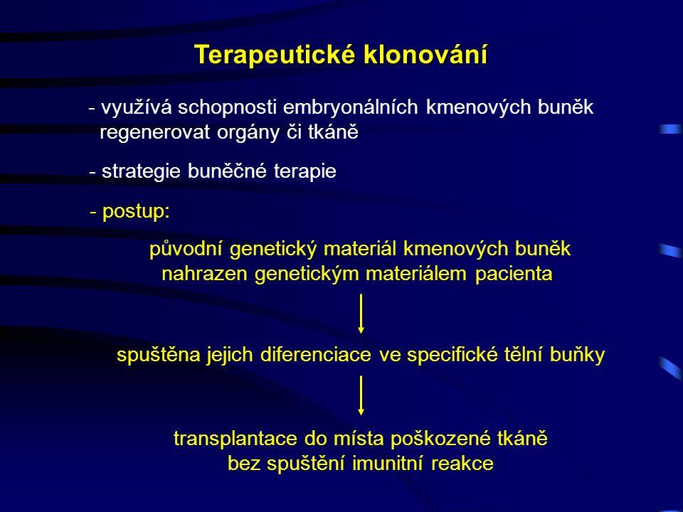 Terapeutické klonování - strategie buněčné terapie původní genetický materiál kmenových buněk nahrazen genetickým materiálem pacienta - využívá schopnosti embryonálních kmenových buněk regenerovat orgány či tkáně spuštěna jejich diferenciace ve specifické tělní buňky transplantace do místa poškozené tkáně bez spuštění imunitní reakce - postup: