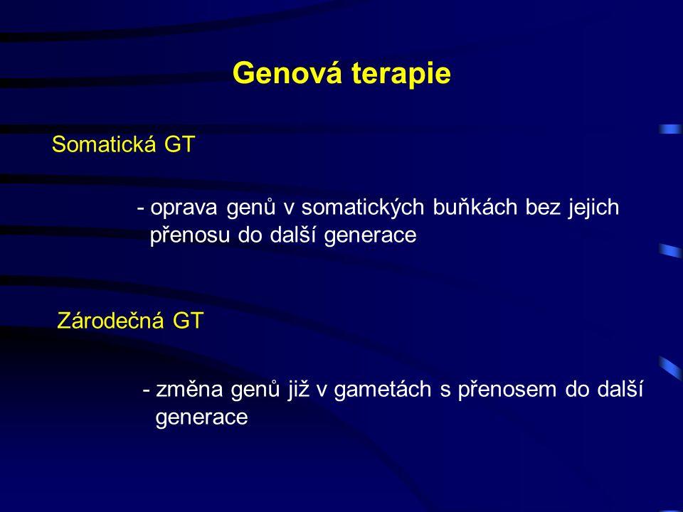Genová terapie Somatická GT - oprava genů v somatických buňkách bez jejich přenosu do další generace Zárodečná GT - změna genů již v gametách s přenosem do další generace