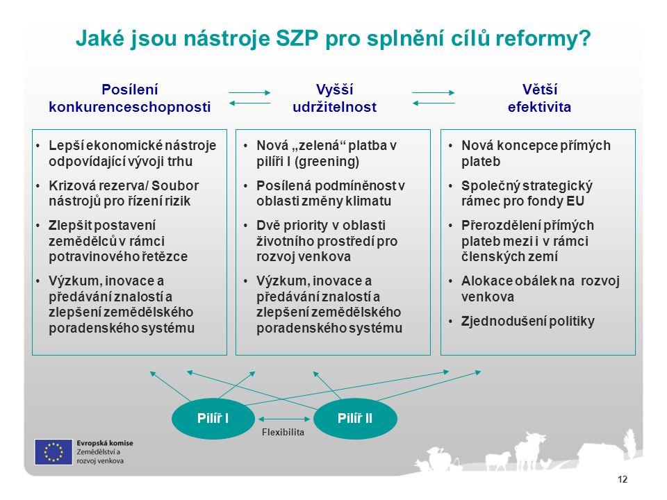 12 Jaké jsou nástroje SZP pro splnění cílů reformy.
