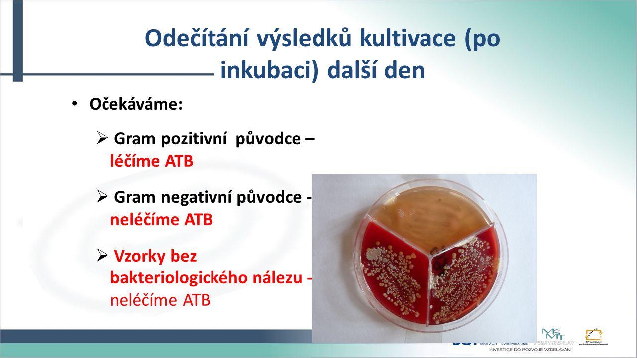 Odečítání výsledků kultivace (po inkubaci) další den Očekáváme:  Gram pozitivní původce – léčíme ATB  Gram negativní původce - neléčíme ATB  Vzorky bez bakteriologického nálezu - neléčíme ATB