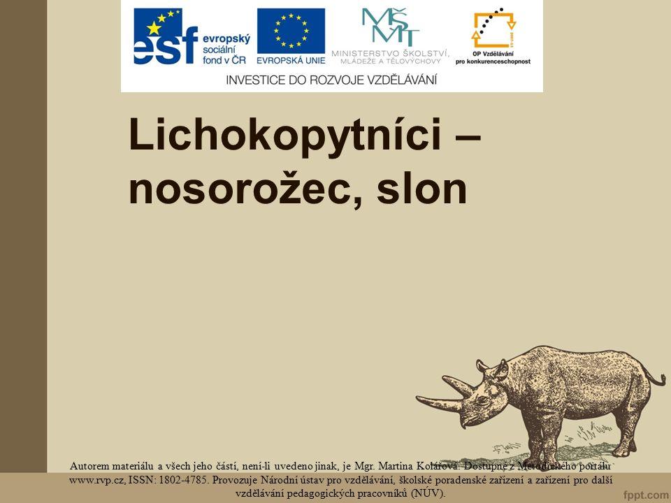 Lichokopytníci – nosorožec, slon Autorem materiálu a všech jeho částí, není-li uvedeno jinak, je Mgr.