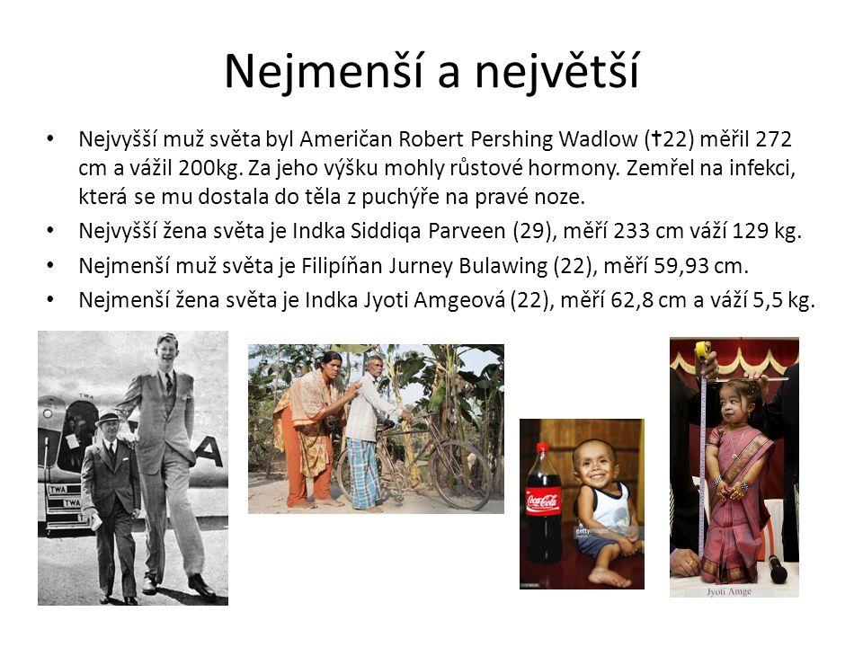 Nejmenší a největší Nejvyšší muž světa byl Američan Robert Pershing Wadlow ( t 22) měřil 272 cm a vážil 200kg. Za jeho výšku mohly růstové hormony. Ze
