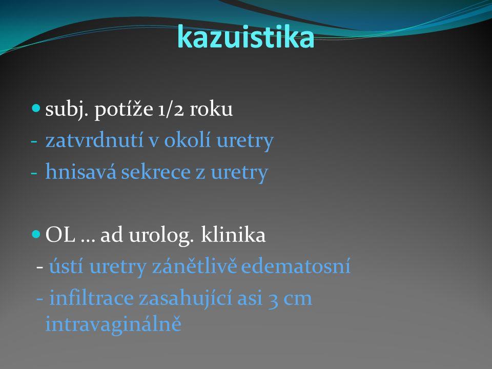 kazuistika subj.