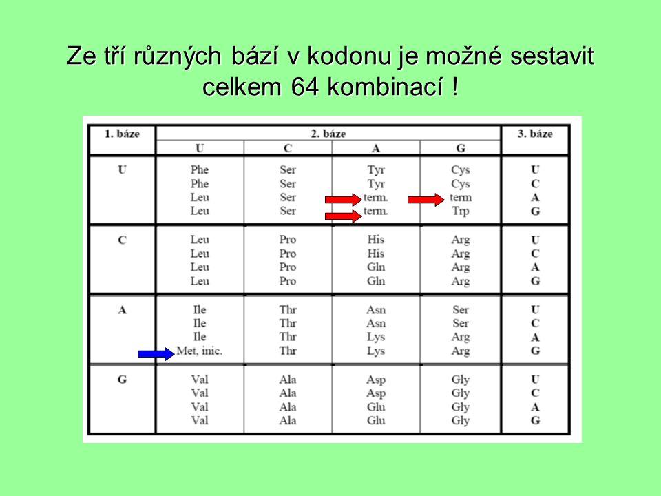 Ze tří různých bází v kodonu je možné sestavit celkem 64 kombinací !