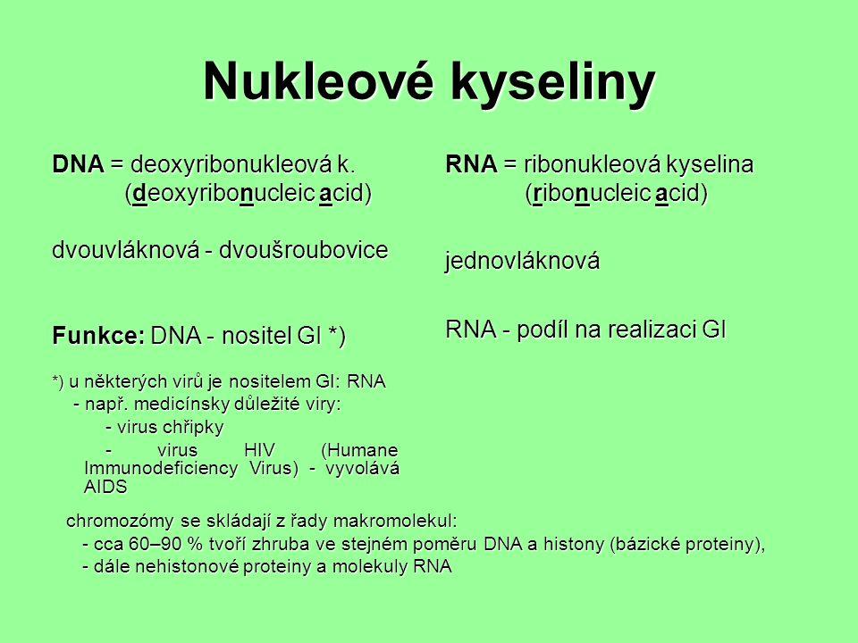 Nukleové kyseliny DNA = deoxyribonukleová k.