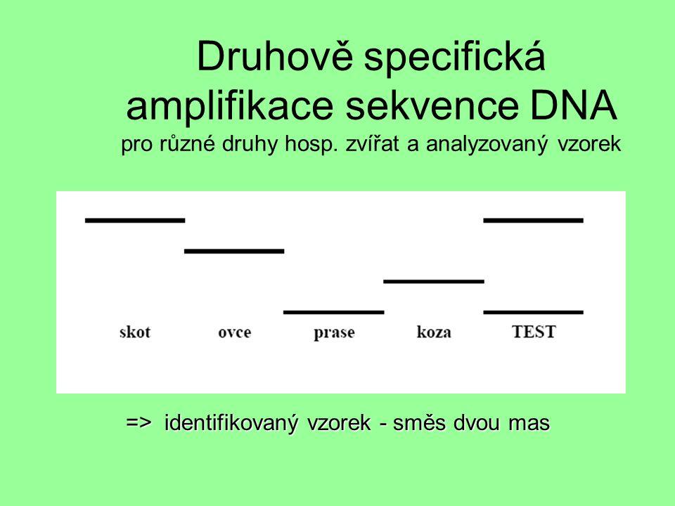 Druhově specifická amplifikace sekvence DNA pro různé druhy hosp.