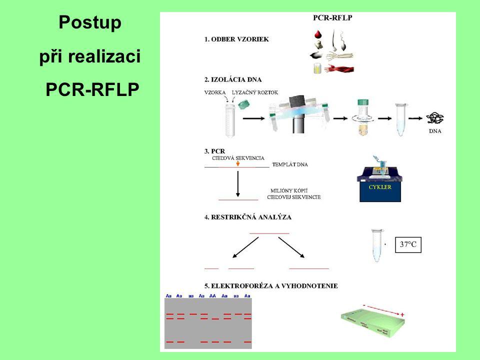 Postup při realizaci PCR-RFLP