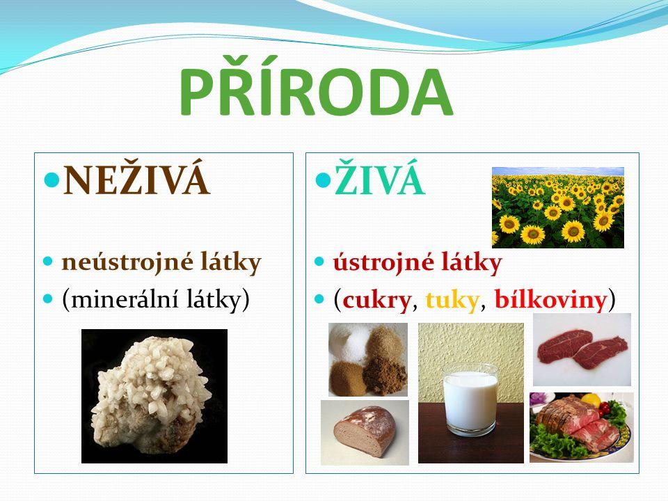 PŘÍRODA NEŽIVÁ neústrojné látky (minerální látky) ŽIVÁ ústrojné látky (cukry, tuky, bílkoviny)