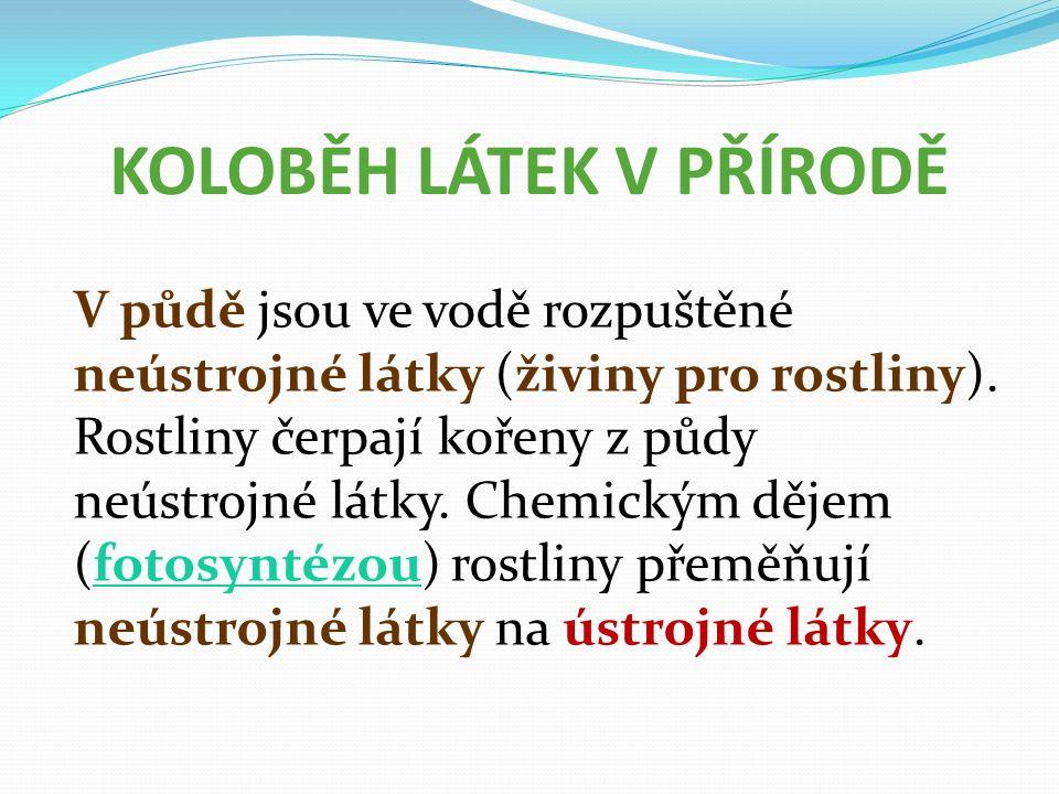 KOLOBĚH LÁTEK V PŘÍRODĚ V půdě jsou ve vodě rozpuštěné neústrojné látky (živiny pro rostliny).