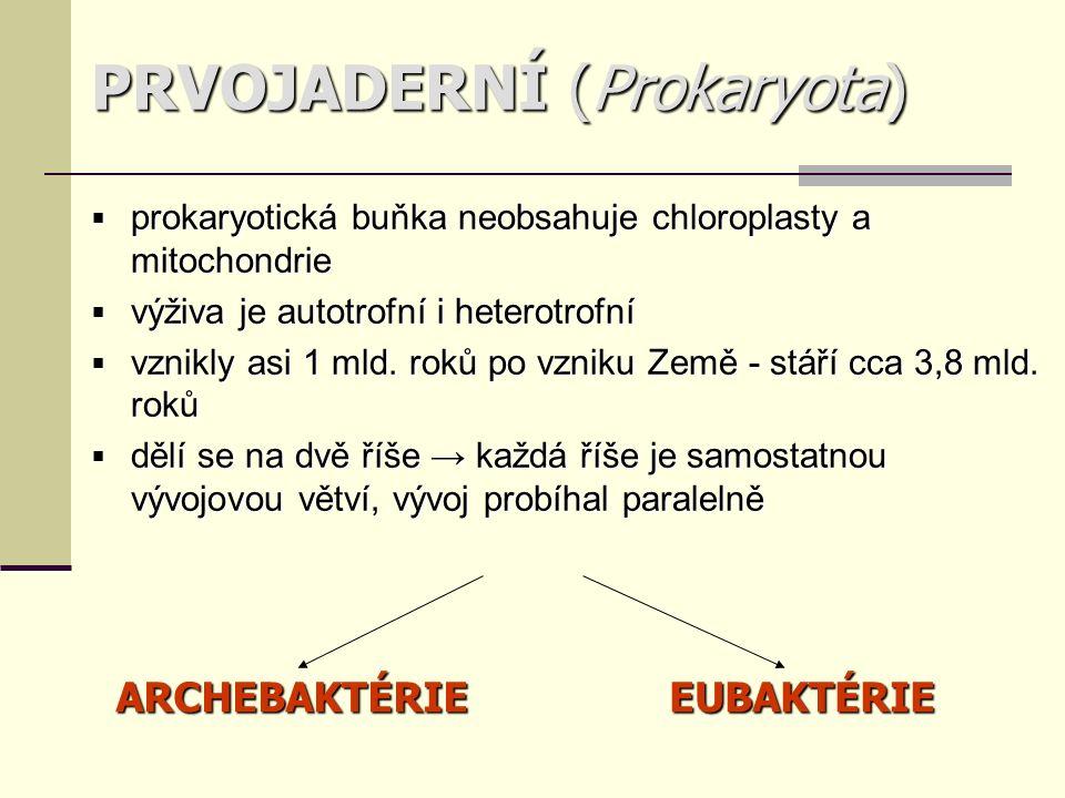 PRVOJADERNÍ (Prokaryota)  prokaryotická buňka neobsahuje chloroplasty a mitochondrie  výživa je autotrofní i heterotrofní  vznikly asi 1 mld.