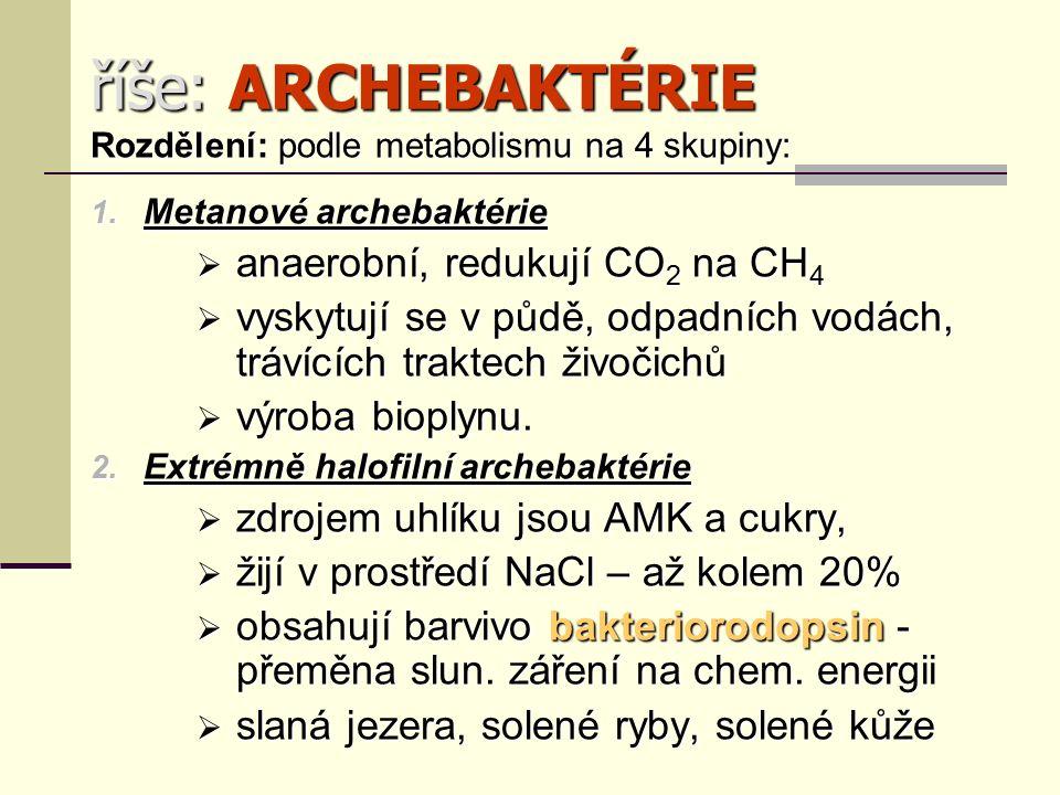 říše: ARCHEBAKTÉRIE Rozdělení: podle metabolismu na 4 skupiny: 1.