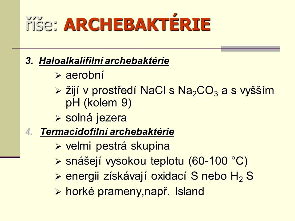 říše: ARCHEBAKTÉRIE 3.