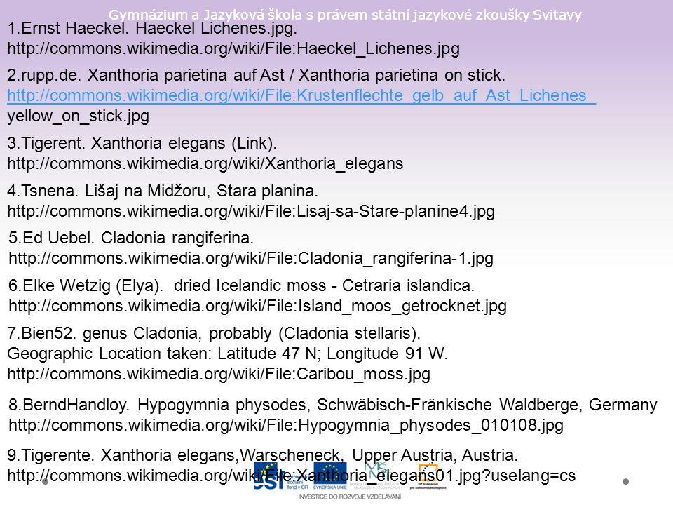Gymnázium a Jazyková škola s právem státní jazykové zkoušky Svitavy 1.Ernst Haeckel.