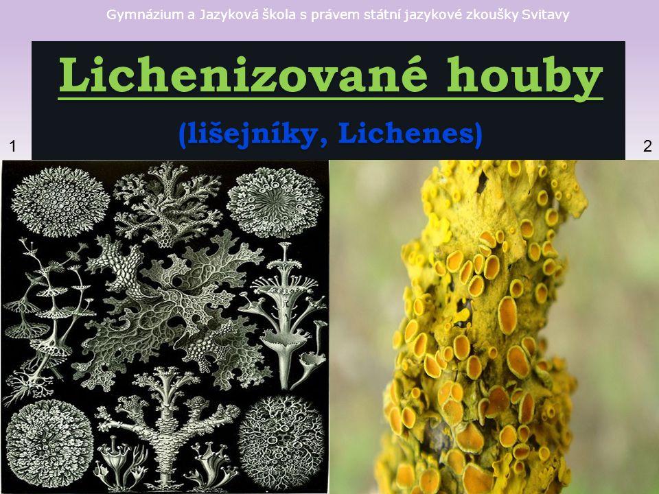 Gymnázium a Jazyková škola s právem státní jazykové zkoušky Svitavy Lichenizované houby (lišejníky, Lichenes) 12