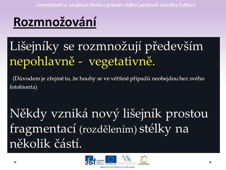 Gymnázium a Jazyková škola s právem státní jazykové zkoušky Svitavy Rozmnožování Lišejníky se rozmnožují především nepohlavně - vegetativně.