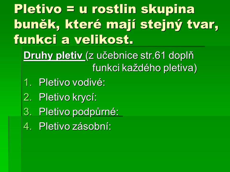 Pletivo = u rostlin skupina buněk, které mají stejný tvar, funkci a velikost.