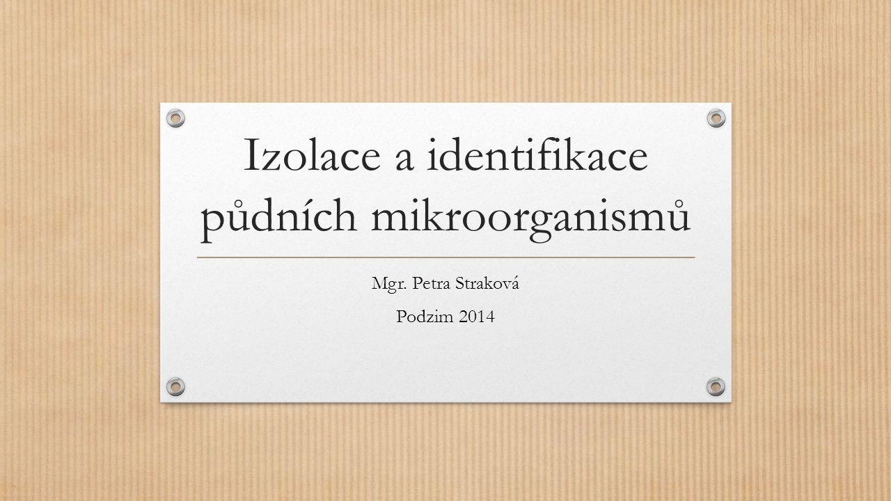 Izolace a identifikace půdních mikroorganismů Mgr. Petra Straková Podzim 2014