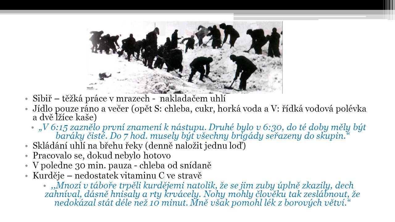 """Sibiř – těžká práce v mrazech - nakladačem uhlí Jídlo pouze ráno a večer (opět S: chleba, cukr, horká voda a V: řídká vodová polévka a dvě lžíce kaše) """"V 6:15 zaznělo první znamení k nástupu."""