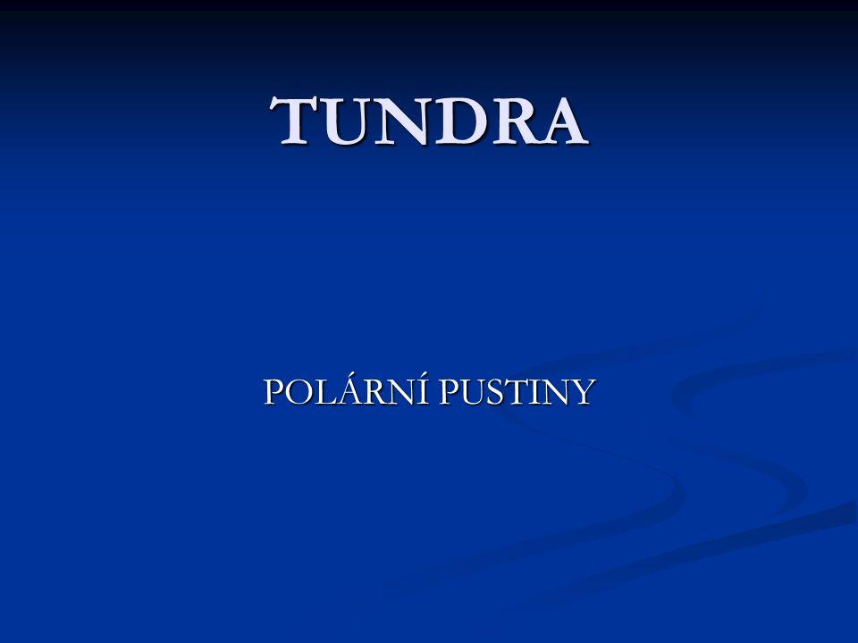 TUNDRA POLÁRNÍ PUSTINY
