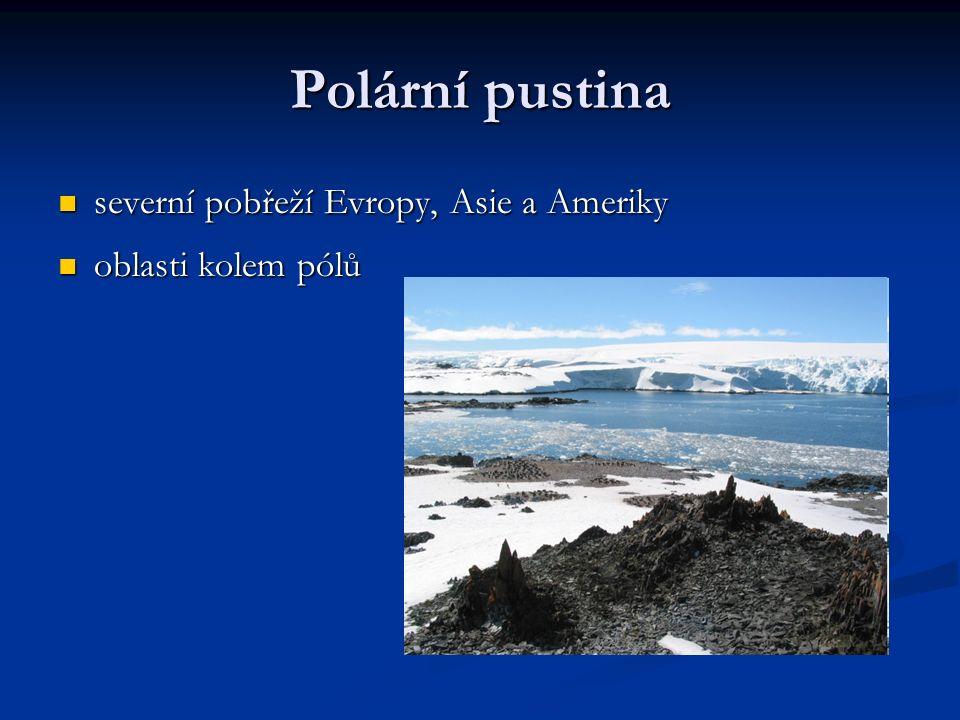 Polární pustina severní pobřeží Evropy, Asie a Ameriky severní pobřeží Evropy, Asie a Ameriky oblasti kolem pólů oblasti kolem pólů